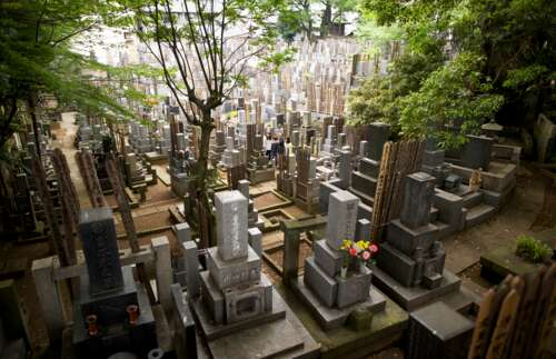 Japanese family at a cemetery